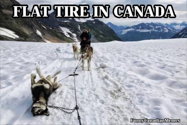 canadian flat.jpg
