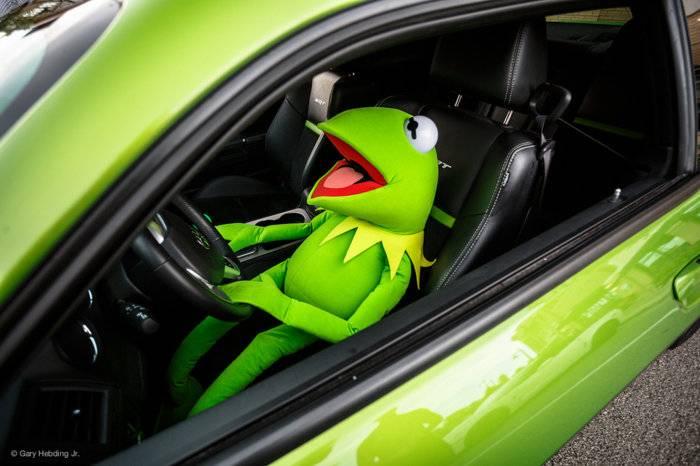 Kermit in car.jpg